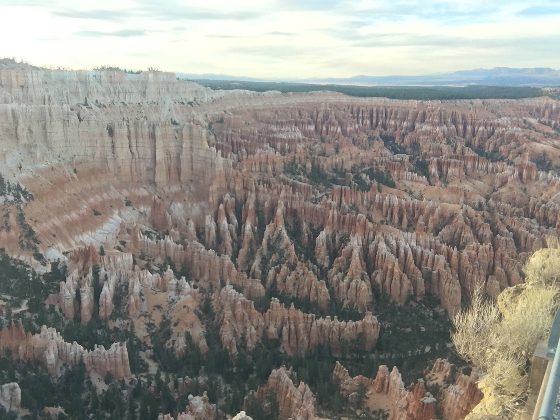 Another shot, looking down into Bryce Canyon.