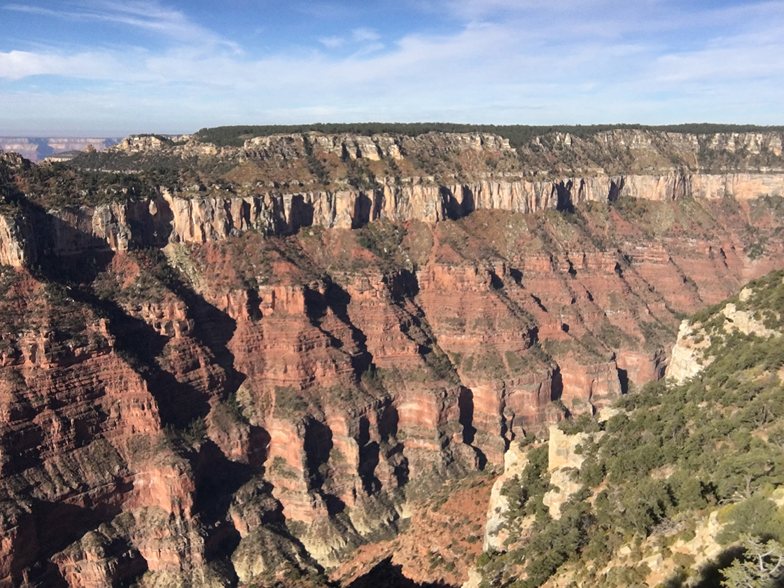 One more shot of the Grand Canyon, showing lots of sedimentary layers.